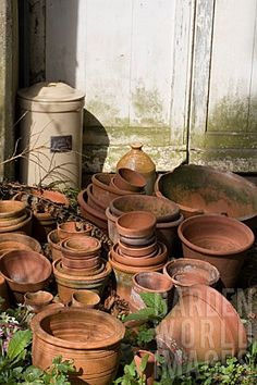 what can I say...I just like terracotta pots!