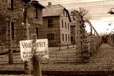 campo de concentracion / auschwitz