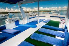 Galapagos Islands, Tour Guide, Ecuador, Html, Tours, Train, Outdoor Decor, Cheap Flights, Cruises
