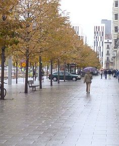 En Zaragoza, mi ciudad hoy ha regresado la lluvia, bendita primavera.
