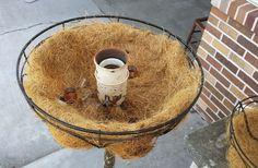 Hometalk | Repurposed Floor Lamp Planter