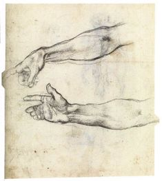 Michelangelo Buonarroti - Studies of an outstretched arm for the fresco 'The Drunkenness of Noah' in the Sistine Chapel Anatomy Drawing, Anatomy Art, Anatomy Images, Life Drawing, Figure Drawing, Sistine Chapel Michelangelo, Trois Crayons, Google Art Project, Renaissance Art