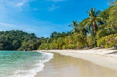 Move to Costa Rica   Living in Costa Rica   Manuel Antonio National Park