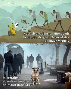 Protection animale - Virtuel et réalité  Ça c'est totalement vrai !!! Tous ceux qui abandonnent leurs animaux sont des cons !!!!!!!!!! Voila ce que le monde est devenu !!!