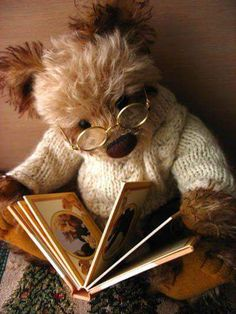 Oso leyendo