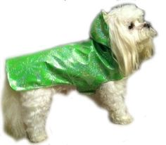 Green Dog Raincoat - great for a summer day when it's raining to keep your pet dry! Fashionable and Fun!  shop today and save on awesome dog clothes / pet apparel. http://www.whirlydogsupplies.com http://home.whirlydogsupplies.com