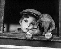 A little boy and baby elephant