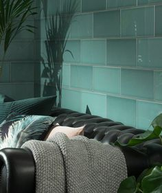 Attingham Earth™ Fern Decor Tile Decor, House, Tiles, Floor Design, Topps Tiles, New Homes, Interior Designers, Green Tile, Modern Tiles