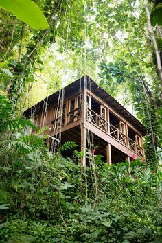 Upper Deck, one of four treetop villas at Kanopi House in Port Antonio, Jamaica