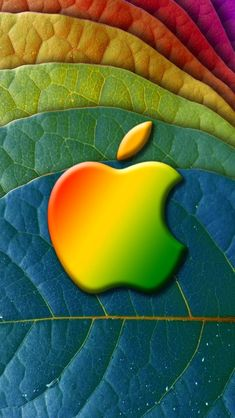 apple on a leaf Micromax A110 Canvas 2 hd wallpapers available for free download.