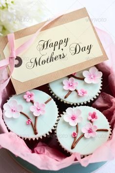 Aqua & Pink Mother's day cupcakes with cherry blossoms. Ideas for Mother's Day party cupcake decoration. Stock photo.