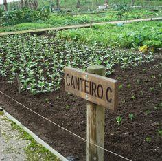 Hortas Comunitárias - PLANTAR PORTUGAL