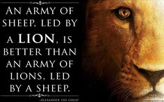 If you want to be a lion you must train with lions popular image an army of sheep led by a lion is better than an fandeluxe Choice Image