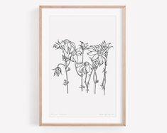 Australian Botanical Art Cards & Floral by KateGrebertDesigns Botanical Wall Art, Floral Wall Art, Botanical Prints, Australian Native Flowers, Wedding Prints, Plant Art, Art Cards, Card Patterns, Botanical Illustration