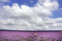 running and the color purple two of my favorite things!