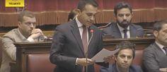 Umberto Marabese : Luigi Di Maio - La caduta dell'impero dei non elet...