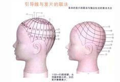 二分區技術之學習美髮要了解的技術知識|Zi 字媒體 Hair Cutting Techniques, Hair Cuts, Beauty, Women, Teaching, Google, Cable Knit Cardigan, Hair, Barbershop