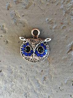 Sapphire Rhinestone Owl Head Charms QTY 8  (O-100) by CarolinaFindingsEtc on Etsy