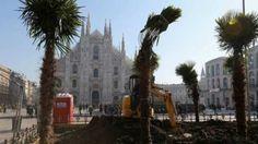 """Lombardia: #Palme in #piazza Duomo a Milano il caso diventa politico. Sala in consiglio: """"Non sono entusiast... (link: http://ift.tt/2loocyu )"""