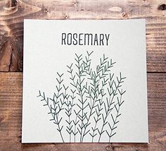 "Rosemary Kitchen Letterpress Print - 8"" x 8"". Rosemary 8"" x 8"" Letterpress Print Printed on 100% cotton paper in black and green ink, this print is a perfect fit in any kitchen for the rosemary lover out there. This 8"" x 8"" print will fit in any standard sized frame or will look great pinned to your inspiration board. - Includes - 1 print - Size - 8"" x 8"" unframed - Paper - Printed on 110lb Lettra 100% cotton paper Note: Each ink is hand mixed and each print is hand printed so slight..."