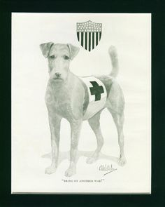 """1920 Print by Robert Dickey of Airedale Terrier Red Cross WW1 War Dog titled underneath """"Bring On Another War !"""" from the """"Dogs from Life"""" Series"""