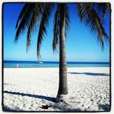 MiniPodNout à Cancun! Besos!