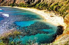 Hanauma Bay Preserve ~ One of the best snorkeling spots in the world. They limit the number of visitors per day. I made the mistake of not wearing flippers and accidentally sliced my toe open on some coral!