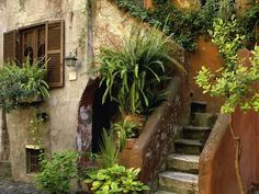 Italy ... who needs a front porch when the steps leading to your front door look like this?