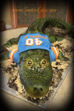 Sandra's Cakes: Florida Gators Cake