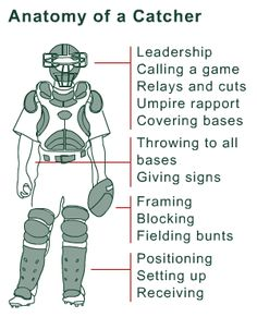Anatomy of a Catcher.I miss softball & catching! Softball Drills, Softball Coach, Softball Mom, Fastpitch Softball, Softball Things, Softball Stuff, Softball Gear, Softball Cheers, Softball Crafts