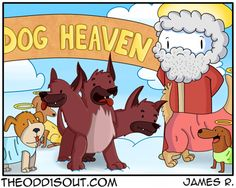 Just fyi Cerberus didn't die and go to heaven. He got lost and just-like cause he lives in the underworld-he can like-sneak into heaven. Facebook Twitter Website
