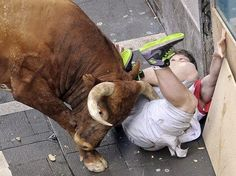 Pamplona, Spain One of two runners gored by a bull during the San Fermin Festival; another five were injured (Villar Lopez/EPA) Bizarre News, Weird News, Weird Facts, People Doing Stupid Things, Crazy People, Animal Heros, Running Of The Bulls, Raging Bull, Funny Fails