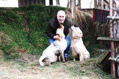 Otros dos habitantes, los perros de caza de mi padre, nos ayudan a espantar a zorros, jinetas y otros carnivoros de nuestras gallinas y pollos. Son muy muy cariñosos.