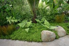 Image result for sloping garden with flat stepping stone for pots