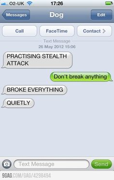 My favorite text from dog-this would be me as a ninja