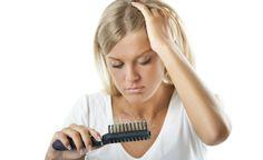 A queda de cabelo deixou de ser uma preocupação só dos homens. Hoje muitas mulheres também sofrem desse problema ainda jovens e procuram em produtos e cremes alguma forma de prevenir esse acontecimento.
