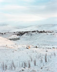 """In the sixth part of his """"Black Dots"""" series, Nicholas White travels to the Cairngorm National Park to complete his exploration of Mountain Bothies. Dartmoor National Park, Cairngorms, World Photography, Documentary Photography, Black Dots, Lake District, British Isles, Landscape Photographers, Natural World"""