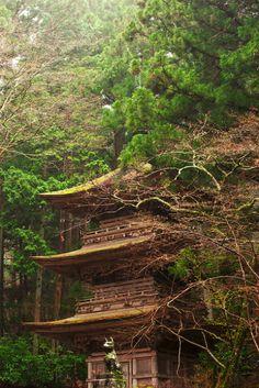 Kozen-ji, Japan ..... How amazing to live here!
