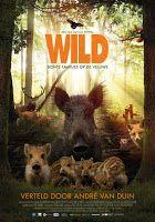 Nieuwe natuurfilm 'Wild: Bonte families op de Veluwe'