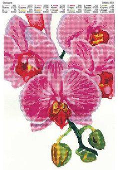 "Схема вышивки бисером ""Орхидея"" Cross Stitch Owl, Cross Stitch Flowers, Cross Stitching, Cross Stitch Embroidery, Cross Stitch Patterns, Seed Bead Patterns, Beading Patterns, Cute Designs, Seed Beads"