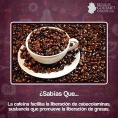 ¿#SabíasQue La cafeína facilita la liberación de catecolaminas? #Curiosidades