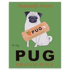 ACHICA | Pug Orange Juice, Fine Art Print, 40 x 50 cm - Heath