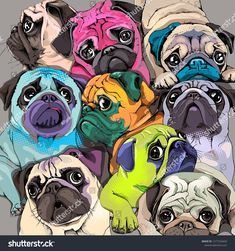 Portrait of many pugs. Composition in a bright coloring Pop Art style. Humor card, t-shirt composition, hand drawn style print. Pug Pop Art, Pug Art, Pet Dogs, Pets, Pug Love, Funny Cards, Boston Terrier, Bull Terriers, Illustration