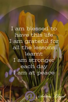 Affirmation: I am grateful and blessed to have this life