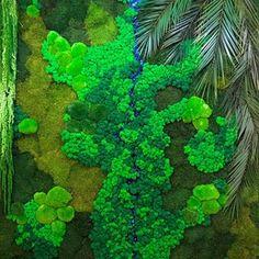 Вертикальное озеленение (@greenmoss48) • Фото и видео в Instagram Aquarium, Fruit, Goldfish Bowl, Aquarium Fish Tank, Aquarius, Fish Tank