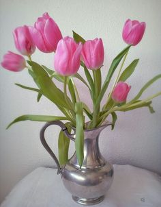 #tulips #photography Caroline Julita #flowers in vase