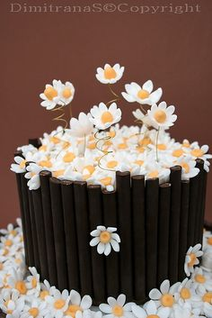 daisy cake I like the fence or bucket idea another take on the stem idea Beautiful Desserts, Gorgeous Cakes, Pretty Cakes, Cute Cakes, Amazing Cakes, Unique Cakes, Creative Cakes, Fondant Cakes, Cupcake Cakes