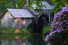 Old. Watermill. Water. Flowers. Lovely.