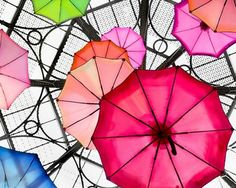 Colorful umbrellas. What does yours looks like?