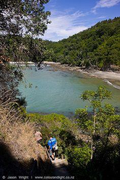 Walking to Otarawairere Bay. credit:www.colourandlight.co.nz